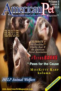APM V2 Issue2