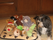 Charlie Bear with toys Jan. 2012 010