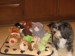 Charlie Bear with toys Jan. 2012 010