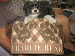 Charlie 2014 016
