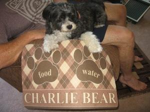 Charlie 2014 015
